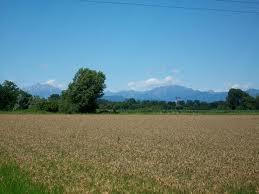 Agricoltura a Cernusco